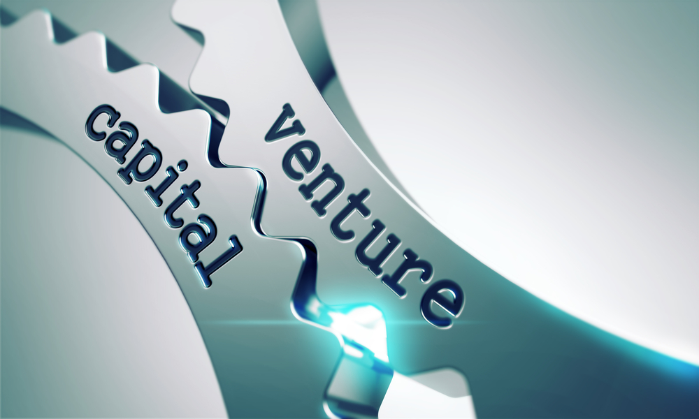 Image result for Venture Investment is